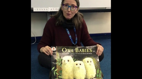 Thumbnail for entry Owl Babies story with Makaton signs