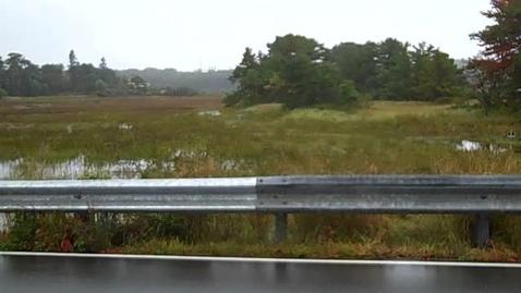 Thumbnail for entry 2011 Ferry Beach ....Salt Marsh