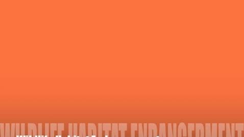 Thumbnail for entry Wildlife Habitat & Endangered Species