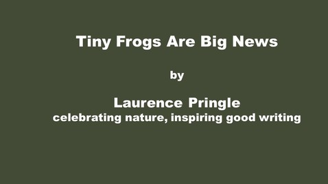 Thumbnail for entry Tiny Frogs are Big News by Laurence Pringle, celebrating nature, inspiring good writing​
