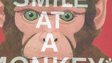 Thumbnail for entry Never Smile at a Monkey