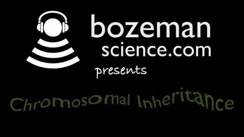 Thumbnail for entry  Chromosomal Inheritance