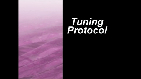 Thumbnail for entry Tuning Protocol:  Fine Tuning Our Classroom Practice with Presenting Teacher Gareth Richards