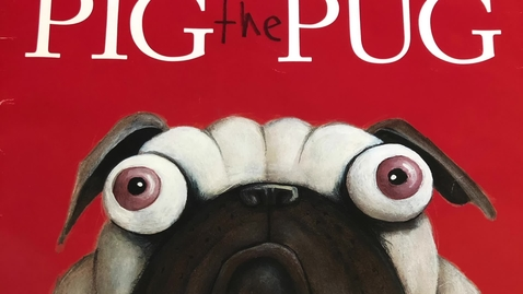 Thumbnail for entry Pig the Pug
