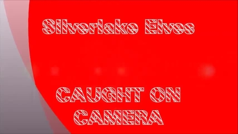 Thumbnail for entry Silverlake Elves