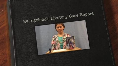 Thumbnail for entry Evangelene's Mystery Case Report