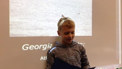 Thumbnail for entry Georgia Regions Austin Atlantic Ocean