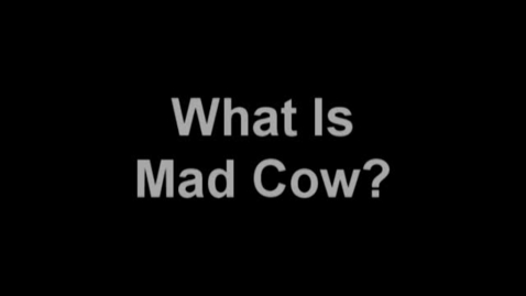 Thumbnail for entry What Is Mad Cow?