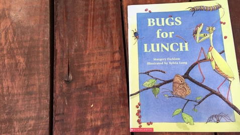Thumbnail for entry Read Aloud Bugs for Lunch 4-21-20