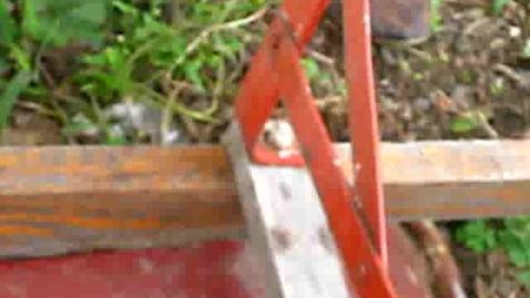 Thumbnail for entry Korean Gardens 25