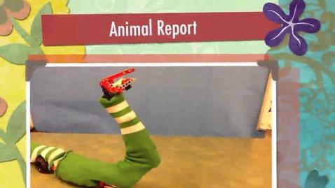 Thumbnail for entry Thorfinn's Animal Report