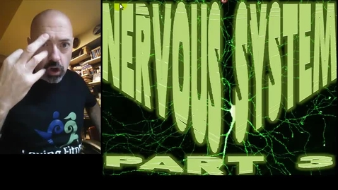 Thumbnail for entry Nervous System Part 3 - Synapses