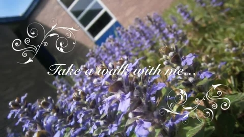Thumbnail for entry Take a Walk With Me