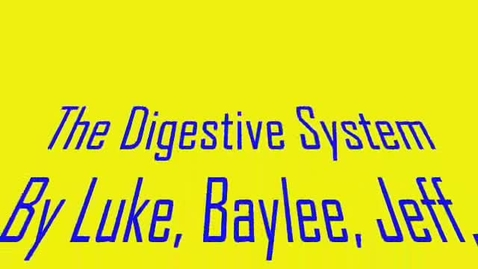 Thumbnail for entry Digestive