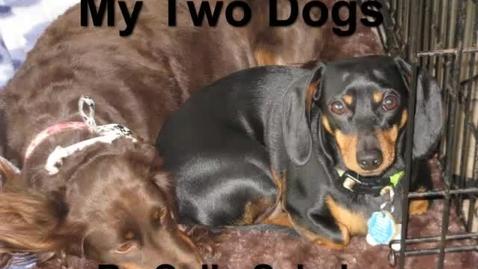 Thumbnail for entry Dog Poem
