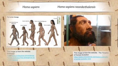 Thumbnail for entry Human Evolution Part II