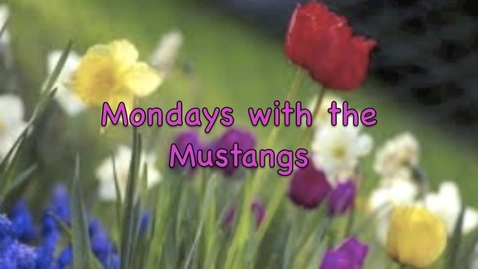 Thumbnail for entry Monday with the Mustangs April 18