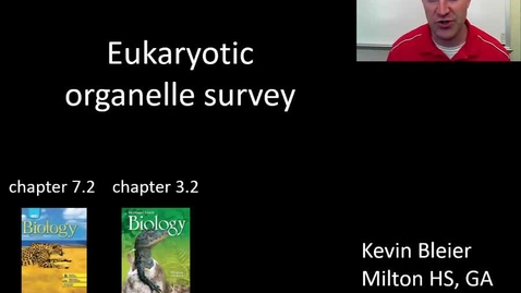 Thumbnail for entry Eukaryotic organelles