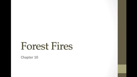 Thumbnail for entry 10D Forest Fires