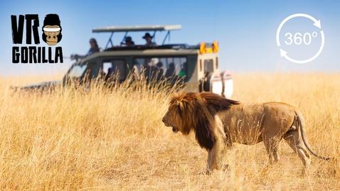 Thumbnail for entry Guided Safari In Queen Elizabeth Park, Uganda (360 VR Video)
