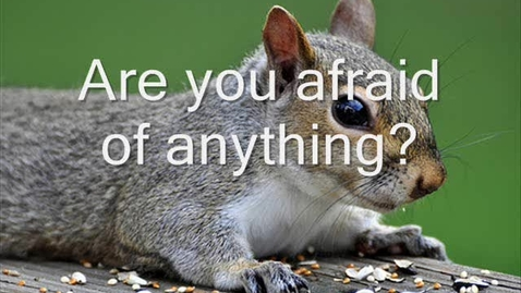 Thumbnail for entry 64 Scaredy Squirrel