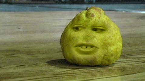 Thumbnail for entry Fruit Face PSA