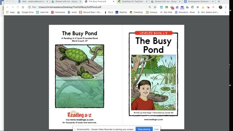 Thumbnail for entry The Busy Pond
