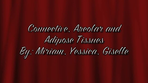 Thumbnail for entry connective tissues, areolar, adipose