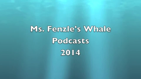 Thumbnail for entry Fenzle Whale Podcast