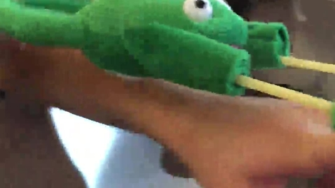 Thumbnail for entry Frog Slingshot