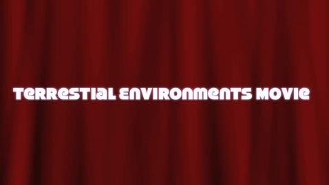 Thumbnail for entry Terrarium Video Journal
