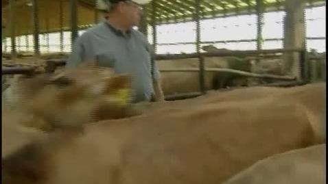 Thumbnail for entry Meet a Dairy Farmer