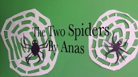 Thumbnail for entry Two Spiders