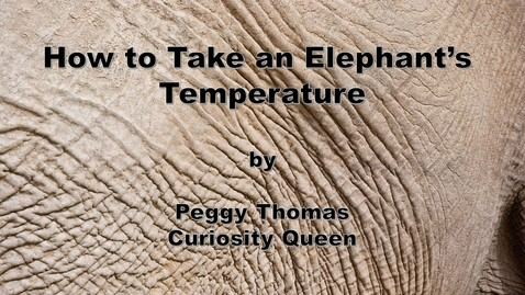 Thumbnail for entry How to Take an Elephant's Temperature by Peggy Thomas, Curiosity Queen: writing science, history, and everything in between
