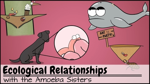 Thumbnail for entry Ecological Relationships