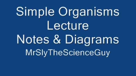 Thumbnail for entry Simple Organisms Protist and Monera