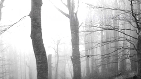 Thumbnail for entry Book Trailer for Anastasia Forever, by Joy Preble