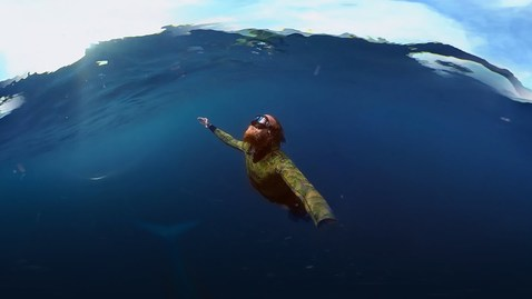 Thumbnail for entry GoPro VR: Diving With a Blue Whale