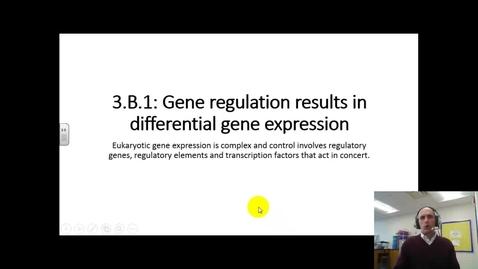 Thumbnail for entry 3b1 eukaryotic gene expression