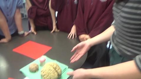 Thumbnail for entry brain talk fls