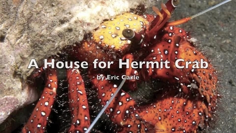 Thumbnail for entry A House for Hermit Crab