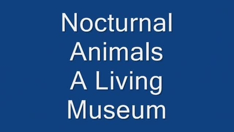 Thumbnail for entry Nocturnal Animals Living Museum