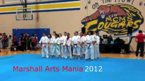 Thumbnail for entry Karate Tournament