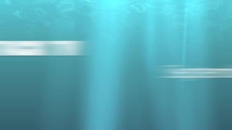 Thumbnail for entry Shark Attack TV 9/29/11
