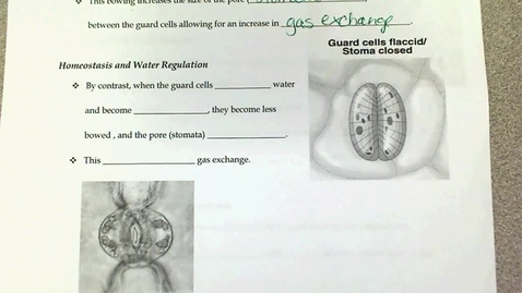 Thumbnail for entry Botany 3 notes part 2