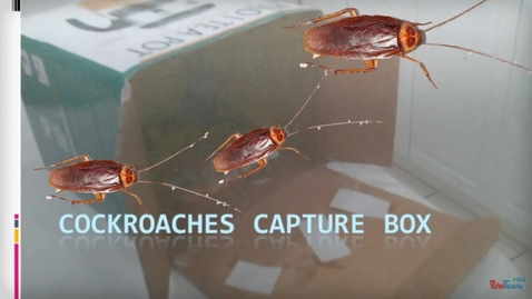 Thumbnail for entry Cockroaches Capture Box, by Arthur