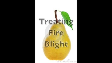 Thumbnail for entry Treating Fire Blight in Pear and Apple Trees