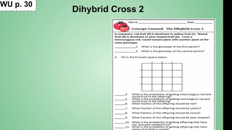 Thumbnail for entry Oompa Loompa Genetics/Dihybrid Cross Warm Up