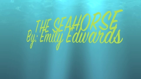 Thumbnail for entry Emily E Seahorse