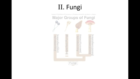Thumbnail for entry Unit 9, Section 3 Fungi video